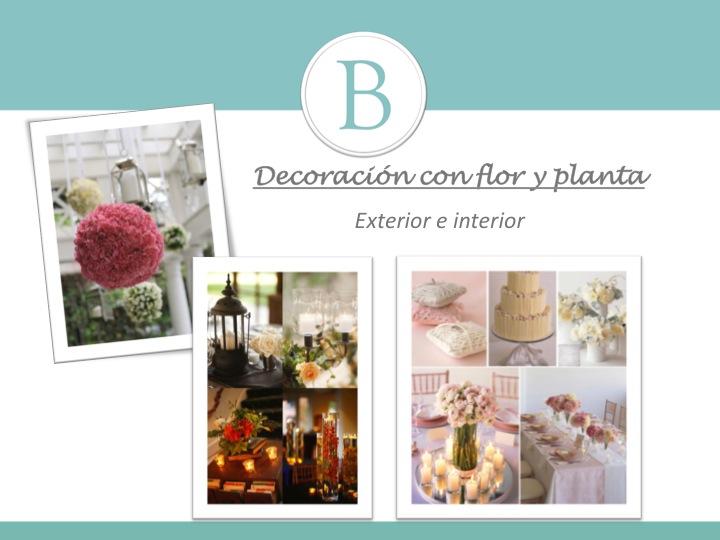 flor y planta