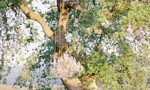 chandeliers boda
